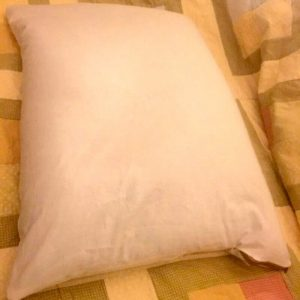 Wonder Buckwheat Hull Pillow